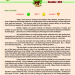 2013 Christmas newsletter, SOJASI, page-1